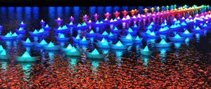 Aether & Hemera, Voyage. Image courtesy of Quays Culture. Origami boats floating on water. The boats are different colours - green, blue, purple, pink.