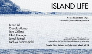 A printed picture of a headland and the sea. List of artists' names and the title of the exhibition Island Life.