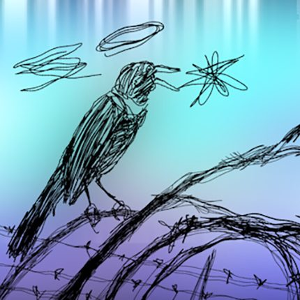 a light blue and purple background. a digital drawing of a blackbird sitting on barbed wire. it is drawn quite quickly and loosely. the image is a still from an animated film called Birds or Borders